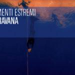 EUDI 2018 Il taravana