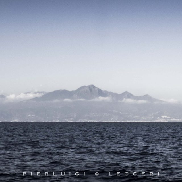 Tunas of Riviera dei Cedri
